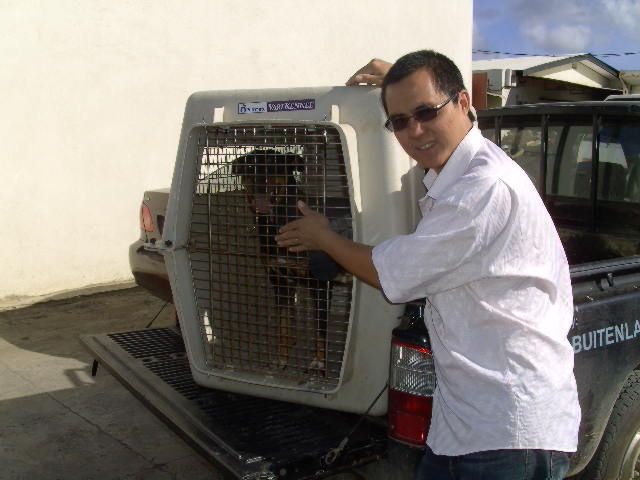 sterilisatiecampagne dierenasiel Bonaire